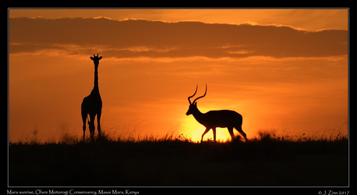 mara_sunrise_8004a.jpg