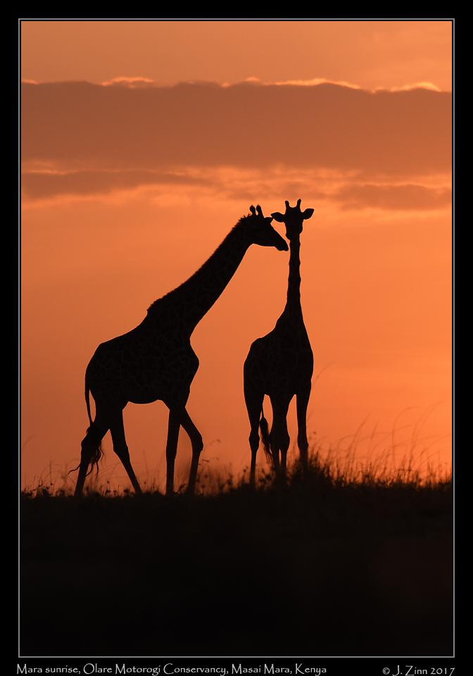 mara_sunrise_8012a-1.jpg